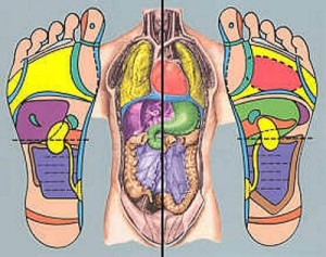 reflexology_foot_chart